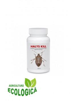 Insecticid de contact, impotriva gandacului puturos Halys Kill, 250 ml