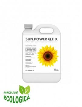 Fertilizant EC foliar cu acizi humici si acizi fulvici pentru floarea soarelui, Sun Power Q.E.D., 10 litri