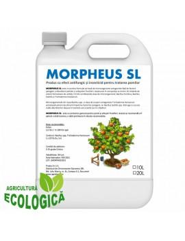 Produs antifungic, insecticid, Morpheus SL, pentru pomi și arbuști fructiferi, 10 litri